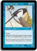 泥棒カササギ/Thieving Magpie (UD)