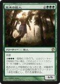 高木の巨人/Arbor Colossus (THS)