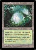ジャングルの盆地/Jungle Basin (VIS)