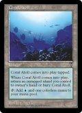 珊瑚礁/Coral Atoll (VIS)