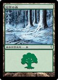 冠雪の森/Snow-Covered Forest (CSP)