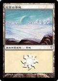 冠雪の平地/Snow-Covered Plains (CSP)