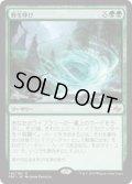 野生呼び/Wildcall (Prerelease Card)