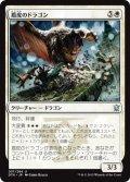 盾皮のドラゴン/Shieldhide Dragon (DTK)