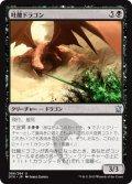 吐酸ドラゴン/Acid-Spewer Dragon (DTK)