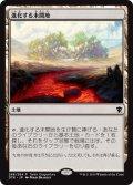 進化する未開地/Evolving Wilds (Tarkir Dragonfury)