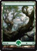 森/Forest 【Ver.5】 (BFZ)