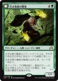 古き知恵の賢者/Sage of Ancient Lore (SOI)