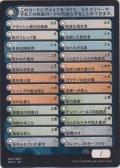 チェックリスト/Checklist 【Ver.2】 (SOI)