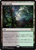 花盛りの湿地/Blooming Marsh (KLD)