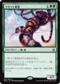 うろつく蛇豹/Prowling Serpopard (AKH)