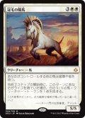 冠毛の陽馬/Crested Sunmare (HOU)