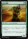 砂丘の易者/Dune Diviner (HOU)