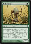 非道の総督/Brutalizer Exarch (NPH)