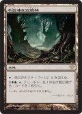 不気味な辺境林/Grim Backwoods (DKA)