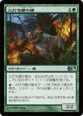 火打ち蹄の猪/Flinthoof Boar (M13)