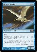 天空のアジサシ/Welkin Tern (M13)