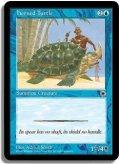 角海亀/Horned Turtle (POR)