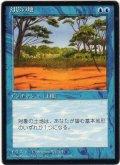 幻影の地/Phantasmal Terrain【日本語:黒枠】(4ED)