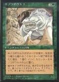 キノコザウルス/Fungusaur【日本語:黒枠】(4ED)