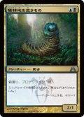 植林地を這うもの/Woodlot Crawler (DGM)