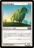 柱平原の雄牛/Pillarfield Ox (M14)