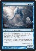 潮力/Tidal Force (C13)