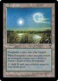 大沼沢地/Everglades (VIS)