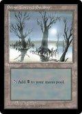 冠雪の沼/Snow-Covered Swamp (ICE)