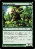 森林の庇護者/Timber Protector (LRW)