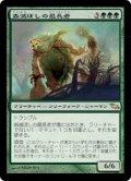 森滅ぼしの最長老/Woodfall Primus (SHM)