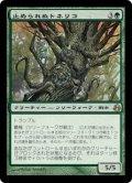 止められぬトネリコ/Unstoppable Ash (MOR)