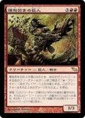 憤怒焚きの巨人/Furystoke Giant (SHM)