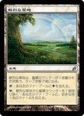 鮮烈な草地/Vivid Meadow (LRW)