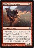 燎原の火のケルベロス/Wildfire Cerberus (JOU)