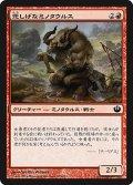 悲しげなミノタウルス/Pensive Minotaur (JOU)