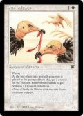 オーサイの禿鷹/Osai Vultures (LEG)