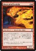 燃えたぎる炎の血族/Flaring Flame-Kin (CNS)