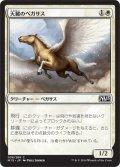 天麗のペガサス/Sungrace Pegasus (M15)