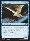 天空のアジサシ/Welkin Tern (M15)