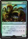 ハイドラの繁殖主/Hydra Broodmaster (基本セット2015 対戦キット)