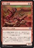 災いの悪魔/Scourge Devil (DDN)