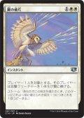 翼の破片/Wing Shards (C14)