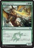 破壊するドラゴン/Destructor Dragon (FRF)