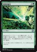 爆発的植生/Explosive Vegetation (DDO)