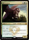 龍王ドロモカ/Dragonlord Dromoka (DTK)