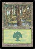 森/Forest【Ver.3】(PO2)