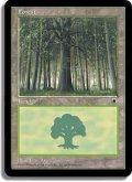 森/Forest【Ver.2】(POR)