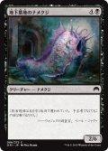 地下墓地のナメクジ/Catacomb Slug (ORI)