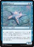印章持ちのヒトデ/Sigiled Starfish (ORI)